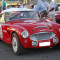 Austin Healey 335526685