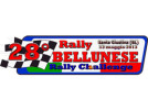 Rally Bellunese 2013