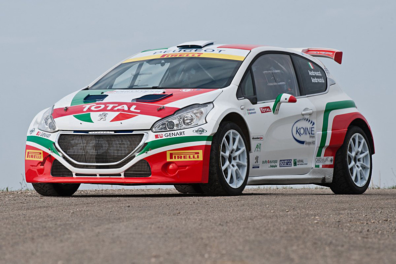 Peugeot 208 T16 Monza Rally Show 2014 (1)